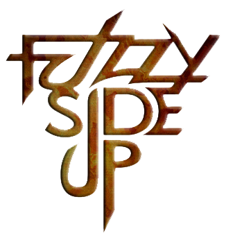 Fuzzy Side Up Classic Rock Band in Houston